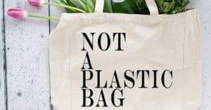 Blog Banner for meori not eco reusable