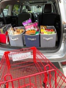 Grocyer Carts at Trader Joes